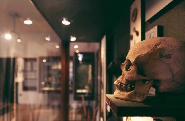 Régészeti kiállítás, Sopron
