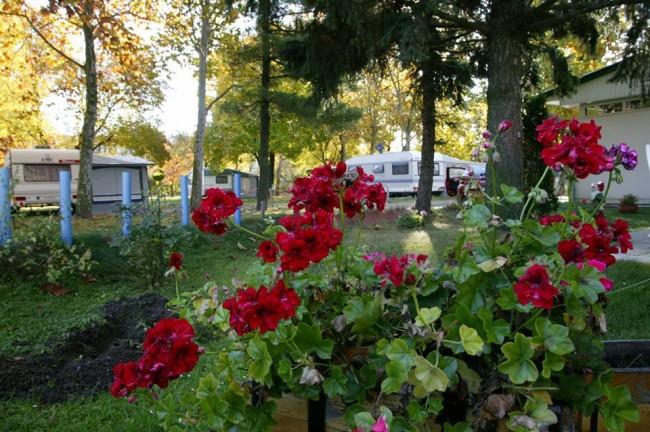 Éva-Camping Bükkfürdő, Bük (Bükfürdő)