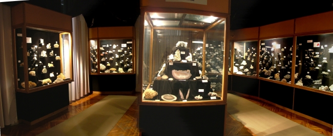 Bakonyi Természettudományi Múzeum                                                                                                                     , Zirc
