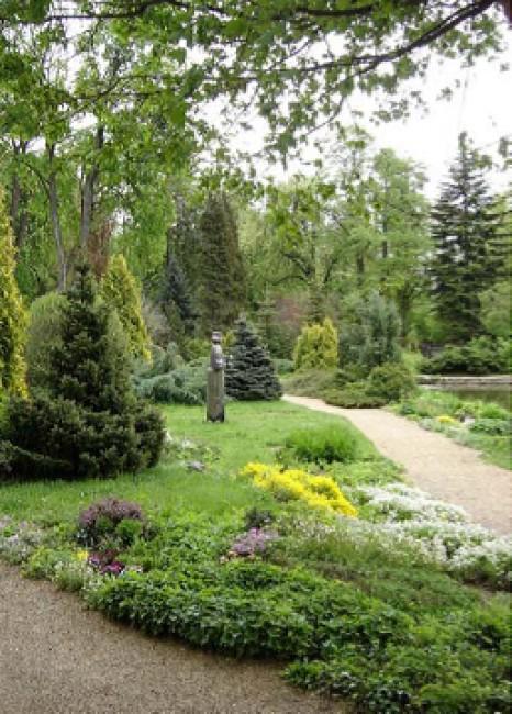 Zirci Ciszterci Arborétum, Zirc