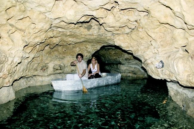 Tapolcai-tavasbarlang<br/>(Balaton-felvidéki Nemzeti Park Igazgatóság), Tapolca