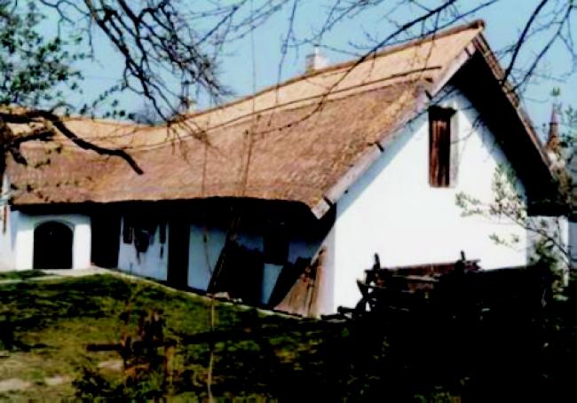 Petőfi Sándor Emlékmúzeum                                                                                                                             , Dömsöd