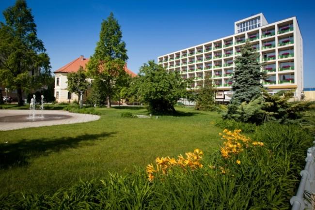 Aranyhomok Business-City-Wellness Hotel, Kecskemét