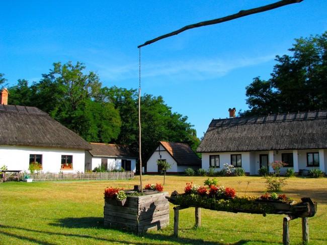 Dechy-Tanya, Lajosmizse