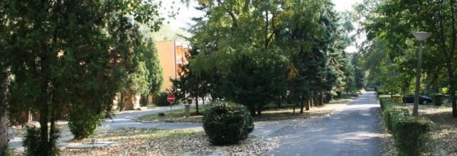 Széchenyi István Középiskolai Kollégium, Békéscsaba