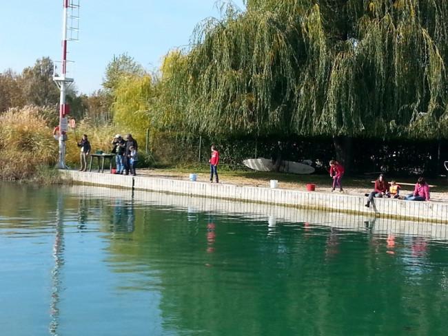 Balatonfűzfői Vitorlázó Sportegyesület, Balatonfűzfő