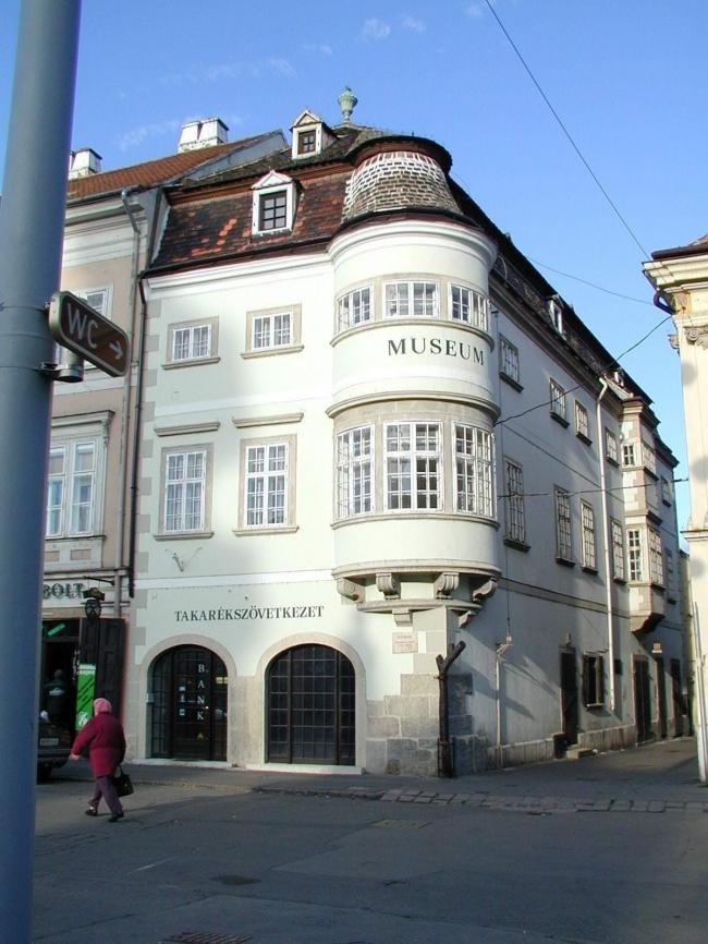 Vastuskós ház, Győr
