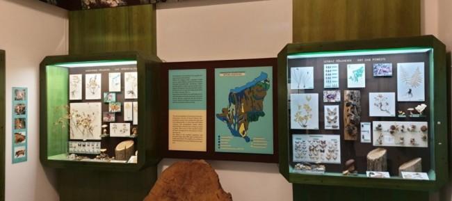 Rippl-Rónai Megyei Hatókörű Városi Múzeum, Kaposvár