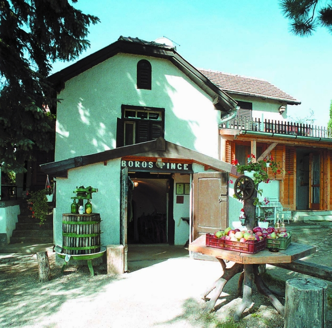 Horváth Pince Apartman                                                                                                                                , Hegymagas