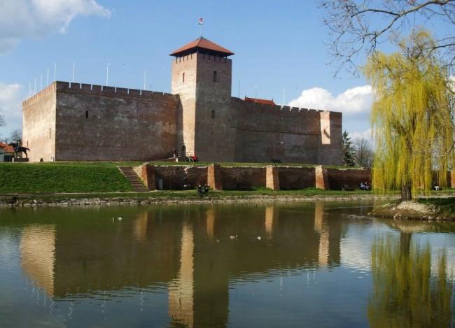 Gyulai vár, Gyula