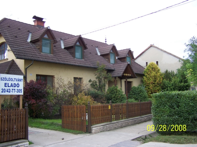 Bene-ház (Bene Jánosné), Villány