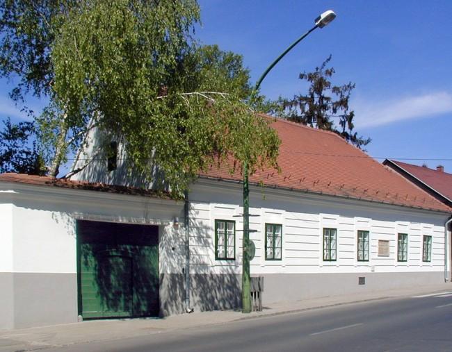 Vaszary Emlékház, Kaposvár