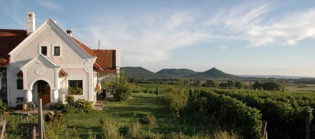 Natura-Présház - Szászi Pince, Hegymagas