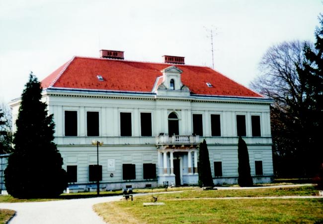 Kiss-Markusovszky-kastély, Vasegerszeg