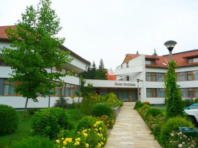 Hotel Orchidea, Tengelic