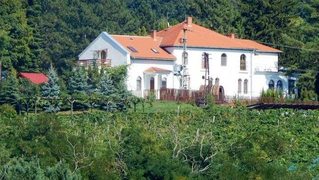 Antal-hegyi MEDOSZ Vendégház, Szigliget