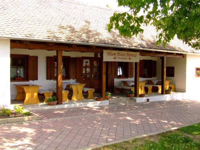 Blum Pince-borozó Vendégház, Villány