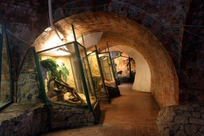 Pécsi Akvárium-Terrárium, Pécs