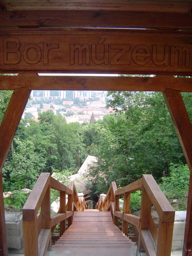 Avasi Bormúzeum és Borvendéglő                                                                                                                        , Miskolc
