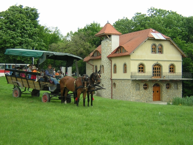 Pusztabuszos Kirándulások a Vértesi Natúrparkban (Pro Vértes Közalapítvány)                                                                           , Csákvár