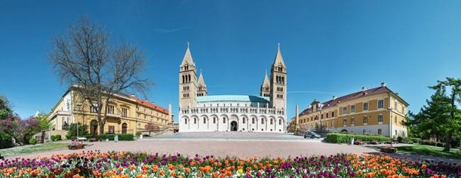 Pécsi Bazilika, Pécs