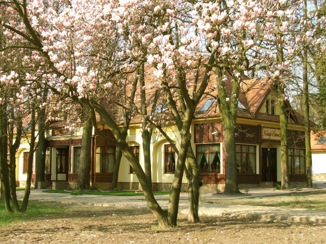 Villa Hotel**** - Krúdy Étterem, Debrecen