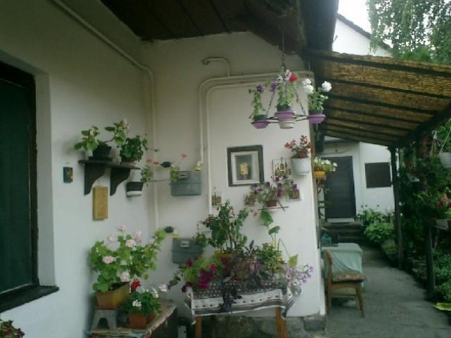 Panni Pihenőház, Szentendre