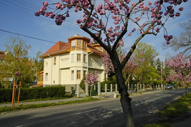 Villa Sakura                                                                                                                                          , Sopron