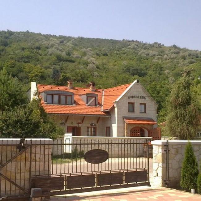 Borgaléria Panzió Tokaj, Tokaj