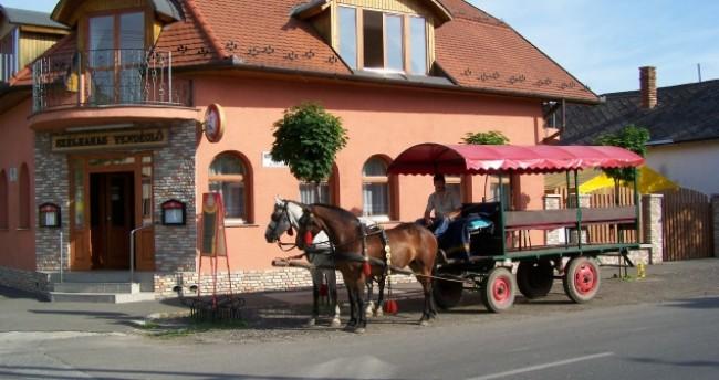 Szélkakas Étterem és Panzió, Szeged