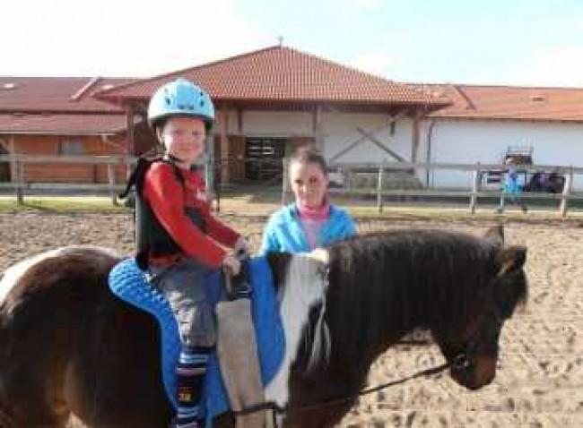 BIOFARM HORSE MOTEL, Kajászó