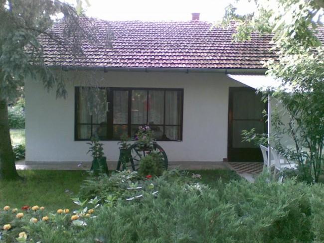 Róza Tanya, Kiskunfélegyháza