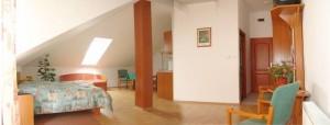 040311_hotelforras_apartman.jpg