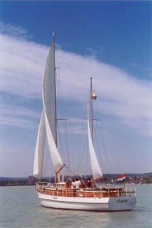 200474p3.jpg