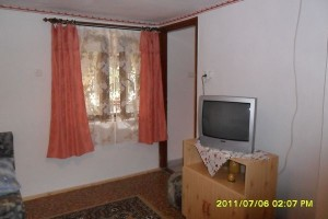 305082_karkusz1.jpg