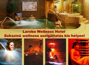 306632_laroba_wellness.jpg