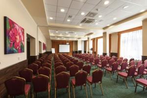 312646_konferencia.jpg